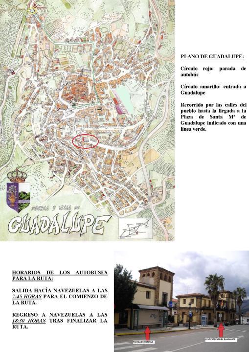 Plano Guadalupe